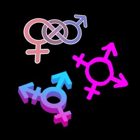 دوجنسگراها، تراجنسیها و دوجنسیها